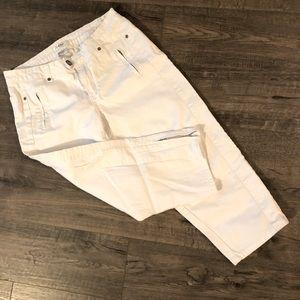 Cache Capri with calf zipper